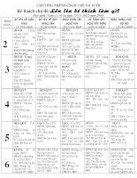 Kế hoạch chủ đề: Bé thích làm nghề gi? (15/11-18/12- 2010)