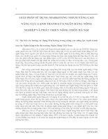 GIẢI PHÁP SỬ DỤNG MARKETING NHẰM NÂNG CAO NĂNG LỰC CẠNH TRANH CỦA NGÂN HÀNG NÔNG NGHIỆP VÀ PHÁT TRIỂN NÔNG THÔN HÀ NỘI