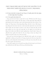 THỰC TRẠNG HIỆU QUẢ SỬ DỤNG VỐN TẠI CÔNG TY CỔ PHẦN PHÁT TRIỂN XÂY DỰNG VÀ XUẤT  NHẬP KHẨU SÔNG HỒNG