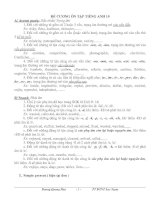 grammar-Exercises;10(new)
