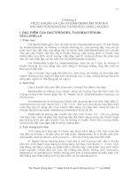 TRỰC KHUẨN VÀ CẦU KHUẨN GRAM ÂM YẾM KHÍ (HỌ BACTEROIDACEAE VÀ HỌ VEILLONELLACEAE)