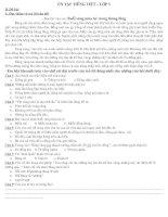 ĐỀ THI CUỐI KÌ II MÔN TIẾNG VIỆT LỚP 5 THEO CHUẨN KIẾN THỨC