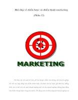 Hỏi đáp về chiến lược và chiến thuật marketing (Phần 12)