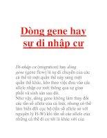 Dòng gene hay sự di nhập cư Di-nhập cư (migration) hay dòng gene (gene flow) là sự di