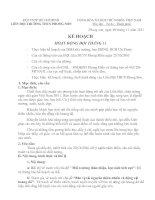 KẾ HOACH HOẠT ĐỘNG ĐỘI THÁNG 11