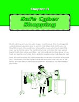 Safe cyber shopping
