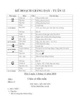 Giáo án lớp 3 - tuần 12. CKTKN( các môn)