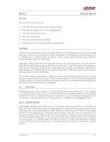 Lập trình với ngôn ngữ C phần 21