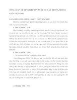 TỔNG QUAN VỀ XÍ NGHIỆP SẢN XUẤT DỊCH VỤ THƯƠNG MẠI DA GIẦY VIỆT NAM