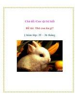 Chủ đề: Con vật bé biết - Đề tài: Thỏ con ăn gì? - Nhóm lớp: 25 – 36 tháng