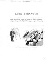 Presenting In English - Using your voice