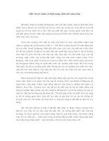 TIẾP THỊ Ở CHÂU Á PHẢI GẮN LIỀN VỚI VĂN HÓA