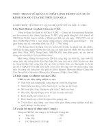 THỰC TRẠNG VỀ QUẢN LÝ CHẤT LƯỢNG TRONG SẢN XUẤT KINH DOANH  CỦA CIRI THỜI GIAN QUA