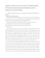 NHỮNG VẤN ĐỀ LÝ LUẬN CHUNG VỀ TẬP HỢP CHI PHÍ ĐỂ TÍNH GIÁ THÀNH Ở DOANH NGHIỆP SẢN XUẤT TRONG CƠ CHẾ THỊ TRƯỜNG