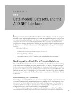 Data Models, Datasets, and the ADO.NET Interface