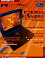 Introduction to Bug Management