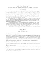 Bộ luật hình sự 1999