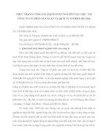 THỰC TRẠNG CÔNG TÁC HẠCH TOÁN NGUYÊN VẬT LIỆU  TẠI CÔNG TY CỔ PHẦN SẢN XUẤT VÀ DỊCH VỤ CƠ ĐIỆN HÀ NỘI
