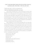 THỰC TRẠNG HOẠT ĐỘNG MARKETING MIX CỦA CÔNG TY DỊCH VỤ THƯƠNG MẠI SỐ 1 TỔNG CÔNG TY DỆT MAY VIỆT NAM