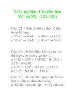 Trắc nghiệm Chuyển hóa VC và NL (121-120)