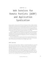 Web Services for Remote Portlets (WSRP) and Application Syndication