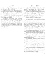 Truyện ngắn tiếng Anh: Dragon heart