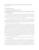 NHỮNG VẤN ĐỀ VỀ LÝ LUẬN VÀ THỰC TIỄN VỀ PHÁT TRIỂN SẢN XUẤT CHÈ