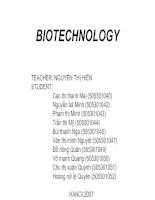 Bài thuyết trình về Công nghệ sinh học (Tiếng Anh)