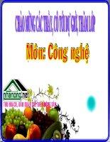 Bài 20: Bảo quản và chế biến nông sản