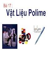 vật liệu polime - 12NC