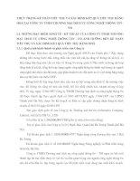 THỰC TRẠNG KẾ TOÁN TIÊU THỤ VÀ XÁC ĐỊNH KẾT QUẢ TIÊU THỤ HÀNG HOÁ TẠI CÔNG TY TNHH THƯƠNG MẠI DỊCH VỤ CÔNG NGHỆ THÔNG TIN