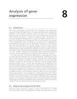 Analysis of gene expression