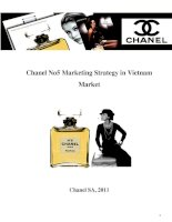 Marketing Strategy Assignment (2012) - Chiến lược marketing cho sản phẩm Chanel No5