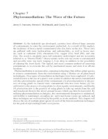 Phytoremediation - The Wave of the Future