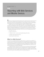 Reporting with Web Services and Mobile Devices.