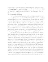 Ý KIẾN ĐÓNG GÓP NHẰM HOÀN THIỆN KẾ TOÁN VỐN BẰNG TIỀN TẠI TỔNG CÔNG TY THÉP VIỆT NAM