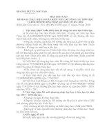 MẪU BÁO CÁO ĐÁNH GIÁ THỰC HIỆN CHUẨN KIẾN THỨC, KĨ NĂNG CÁC MÔN HỌC