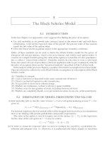 The Black Scholes Model