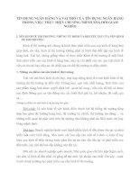TÍN DỤNG NGÂN HÀNG VÀ VAI TRÒ CỦA TÍN DỤNG NGÂN HÀNG TRONG VIỆC THỰC HIỆN CHƯƠNG TRÌNH XOÁ ĐÓI GIẢM NGHÈO