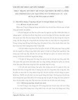 THỰC TRẠNG TỔ CHỨC KẾ TOÁN TẬP HỢP CHI PHÍ VÀ TÍNH GIÁ THÀNH XÂY LẮP TẠI CÔNG TY CỔ PHẦN ĐẦU TƯ - XÂY DỰNG & THƯƠNG MẠI AN PHÁT
