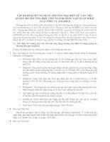 LẬP KẾ HOẠCH ỨNG DỤNG THƯƠNG MẠI ĐIỆN TỬ VÀO VIỆC QUẢNG BÁ THƯƠNG HIỆU CHO NGÀNH HÀNG GẠO XUẤT KHẨU CỦA CÔNG TY ANGIMEX