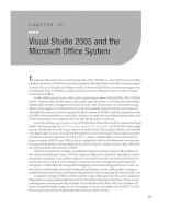 Visual Studio 2005 and the Microsoft Office System