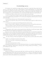 Chương 4: Các hệ thống vector