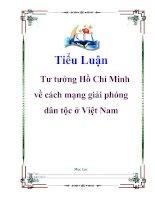 Tiểu luận: Tư tưởng Hồ Chí Minh về cách mạng giải phóng dân tộc ở Việt Nam
