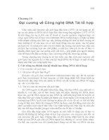 Đại cương về Công nghệ DNA Tái tổ hợp