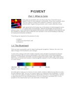 Pigment - Part 1: What is Color