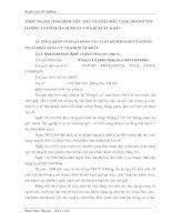 THỰC TRẠNG TÌNH HÌNH TIÊU THỤ VÀ PHẤN ĐẤU TĂNG DOANH THU Ở CÔNG TY CỔ PHẦN DỤNG CỤ CƠ KHÍ XUẤT KHẨU