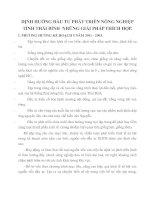 ĐỊNH HƯỚNG ĐẦU TƯ PHÁT TRIỂN NÔNG NGHIỆP TỈNH THÁI BÌNH  NHỮNG GIẢI PHÁP THÍCH HỢP