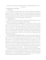 NHỮNG VẤN ĐỀ CƠ BẢN VỀ CÔNG TÁC XỬ LÝ TÀI SẢN BẢO ĐẢM TIỀN VAY CỦA NHTM