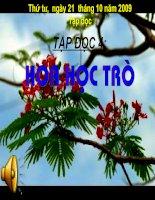 Hoa hoc tro